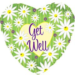 "4"" Get Well Stripes & Daisies"