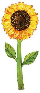 5' Fresh Pick Watercolor Sunflower