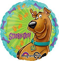 """17"""" Scooby Doo"""