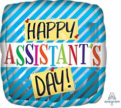 """17"""" Assistant Day Blue Stripes"""