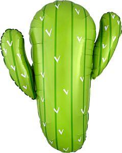"""31"""" Cactus"""