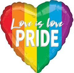 """17"""" Love is Love Pride"""