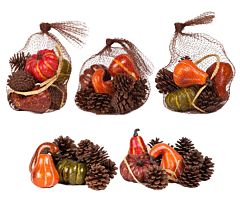 Gourd And Pine Cone Assortment