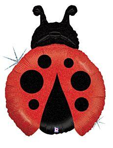 """27"""" Little Ladybug"""