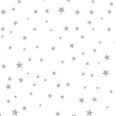 20X20 Cello Sheets - Silver Star