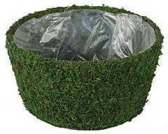 """9"""" Diameter Moss Planter Green"""