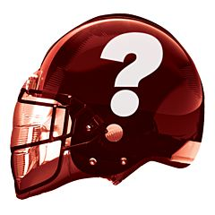 "21"" AFC Champion Helmet"