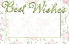 Enclosure Card - Best Wishes
