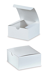 "10X10X6"" Apparel Box - White"